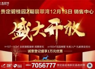 贵定碧桂园2期销售中心盛大开放,红动全城